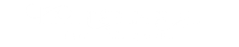 The Thief Steals Her Earl Craven House Series Book One